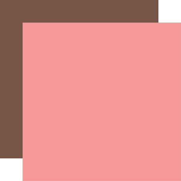 SBG142017 Pink Brown Coordinating Solid